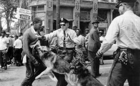 """The iconic 1963 photo """"Birmingham campaign dogs"""" by Bill Hudson, of the Associated Press"""