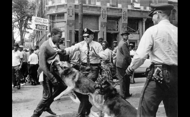 "The iconic 1963 photo ""Birmingham campaign dogs"" by Bill Hudson, of the Associated Press"